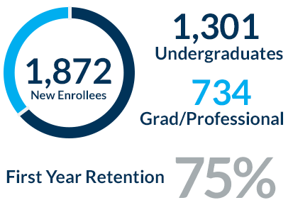 Breakdown of Undergraduates and Graduate Students
