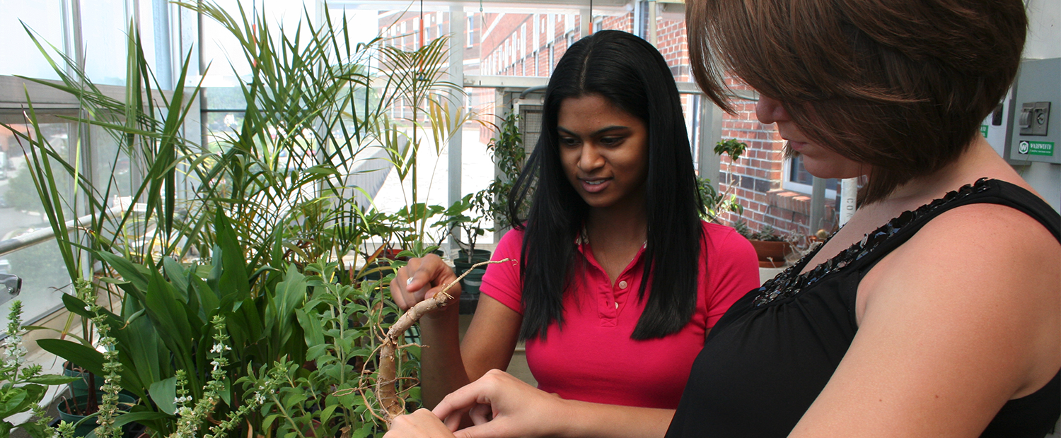 Biology students examine plants